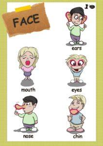 słownik face-2_000001